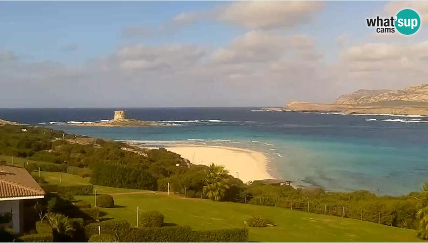 webcam la pelosa beach