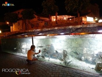 Marine Aquarium Rogoznica webcam Croatia